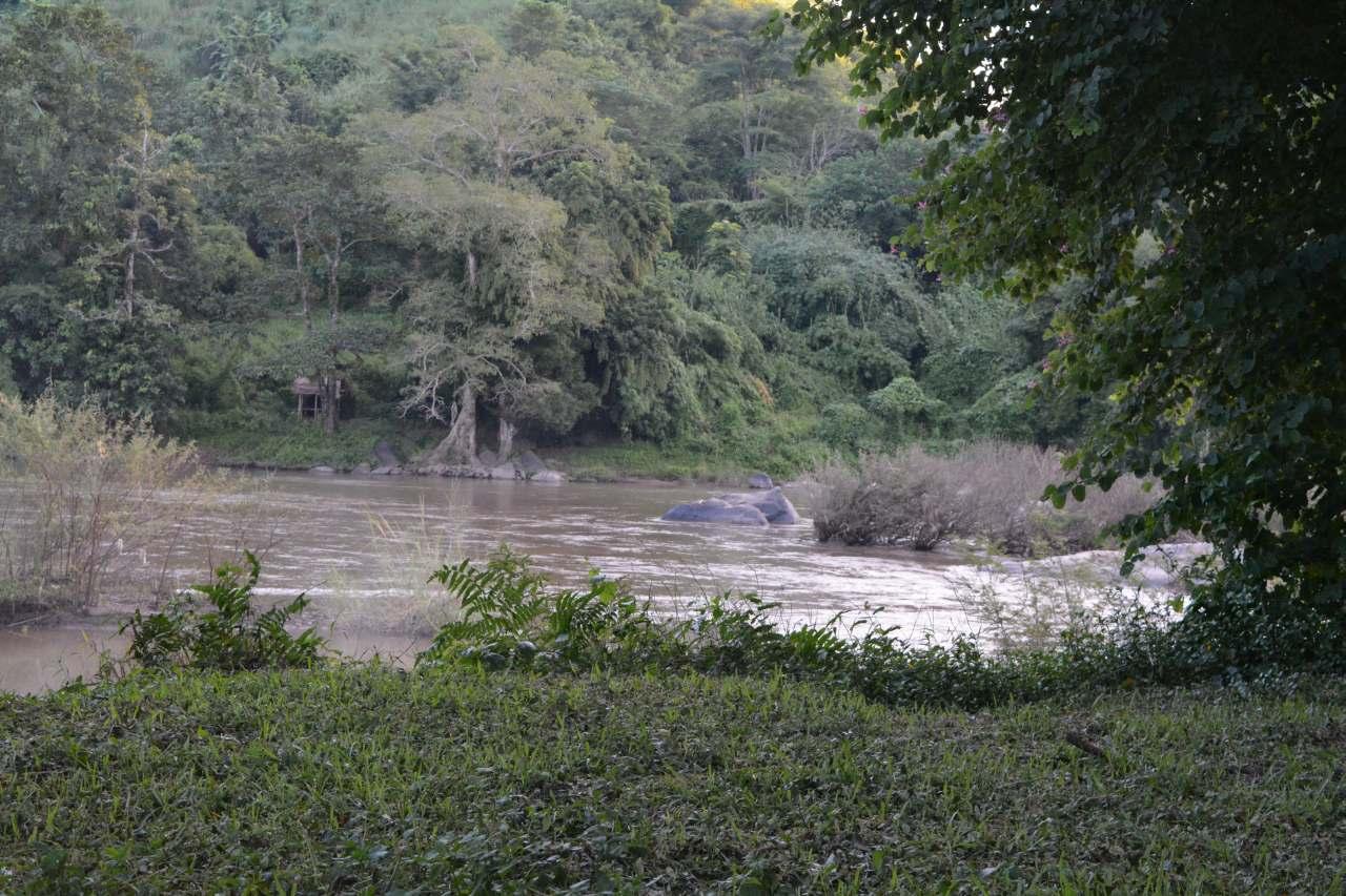 Lam Kok National Park (2)-s