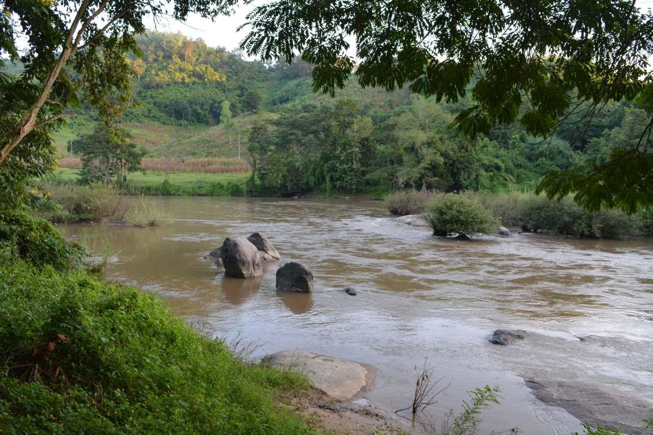 Lam Kok National Park (3)-s