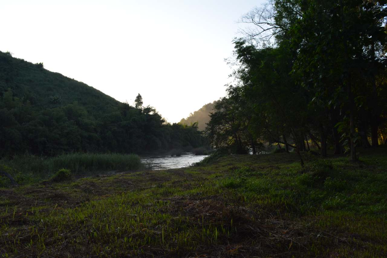 Lam Kok National Park (4)-s