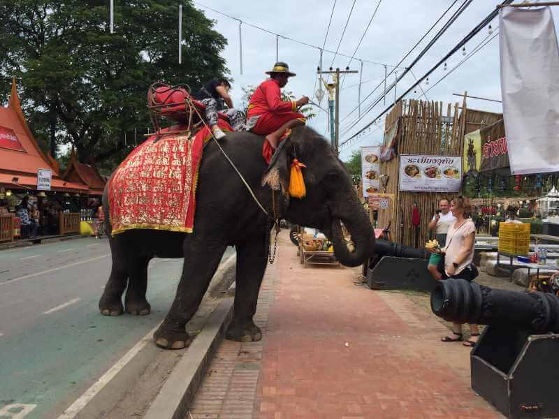 Ayutthaya Historic Park