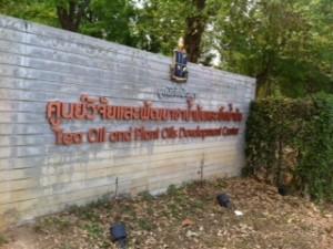 Ein Park zum Joggen oder Sparzieren gehen in Mae Sai