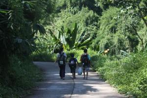 Erlebnisse eines Volunteers in Nordthailand
